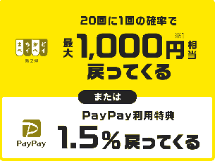 PayPay-1