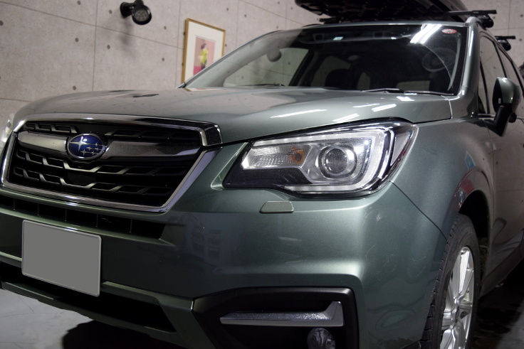 FORESTER 1