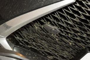 RX洗車003