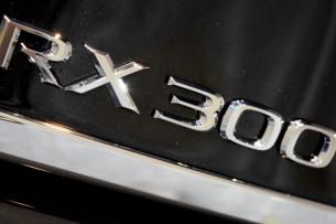 RX300 006