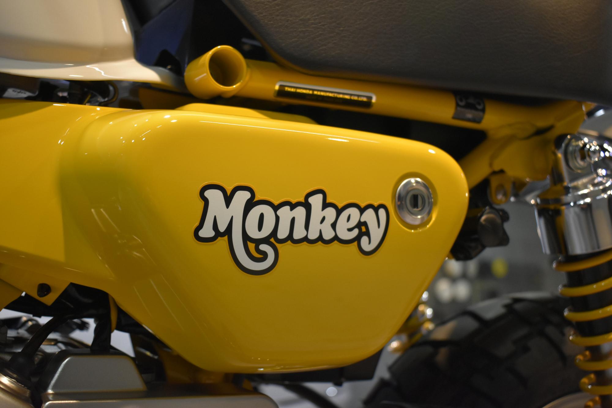 モンキー6