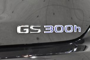GS300-10
